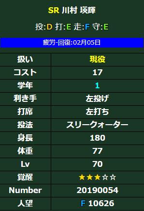 川村データ